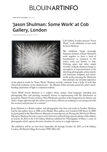 'Jason Shulman: Some Work' at Cob Gallery, London